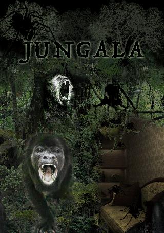 accommodation Jungala 0